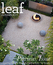 Leaf Magazine Autumn